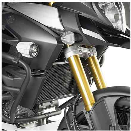 Specific Protection for Radiators Givi